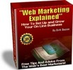 Web Marketing Explained real-life-situation tips